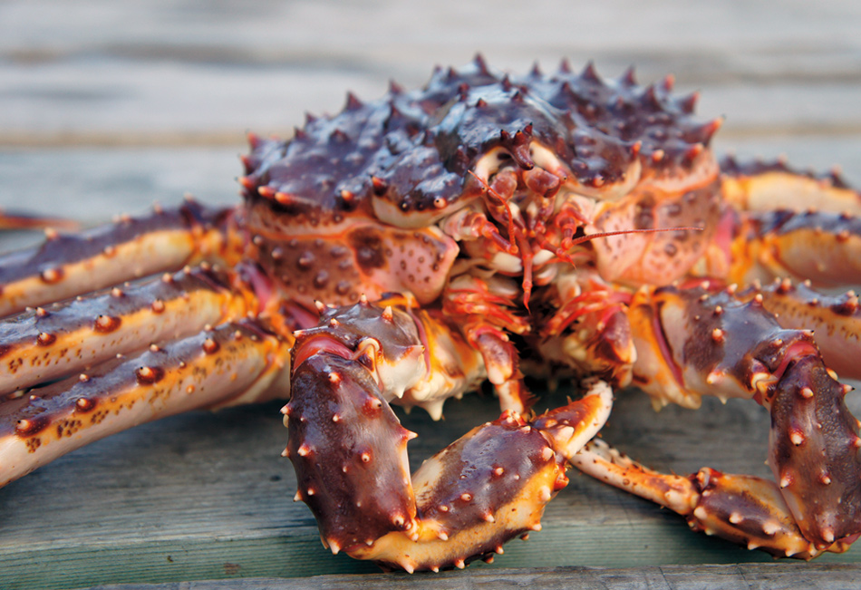 AK Biz: Events Calendar Crab Fest