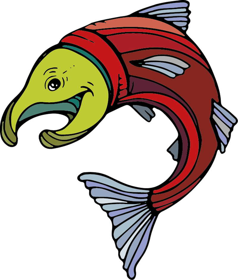 Jumping Fish illustration